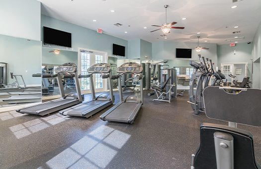Bell Timacuan_Fitness Equipment